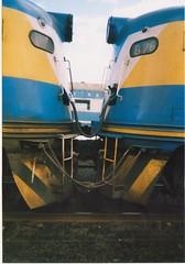 B61 B76 Race Special Warrnambool (tommyg1994) Tags: wcr west coast railway warrnambool emd s b a p class victorian railways vr freight australia r steam engine t s300 s302 s311 b61 b76 r711 t363 t385 ballarat spencer street b80 b65 n vline murraylander
