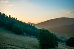 świtanie / dawn (MichalKondrat) Tags: drzewa sierpień polska 2017 natura kotlinakłodzka przyroda masywśnieżnika niebo pejzaż sudety zieleń dolnośląskie góry chmury krajobraz
