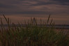 Wirral Coast (Tony Shertila) Tags: 20170718201214 england uk wirral britain clouds coast day europe fort lighthouse mersey merseyside newbrighton outdoor perchrock pig river sand sky birkenhead unitedkingdom beach grass sanddune horizon utdoor wife dusk skin sunset adult gbr