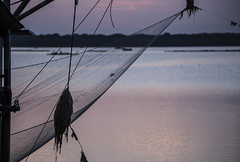 (nadiaorioliphoto) Tags: net rete fishing pescare crepuscolo valle wetland twilight deltadelpo water acqua sera evening