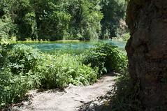 Syri i Kaltër, Sarandë, Albania (Tokil) Tags: syriikaltër sarandë albania southalbania balkans east trip travel colors summer nature mountain water blue green source karst tree shqipëri shqipëria nikond90