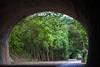 DSC09469 (嵐。山) Tags: sony slta99v 70200mm f28 g ssm ii 子母隧道 竹南崎頂