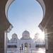 Abu Dhabi through the lens