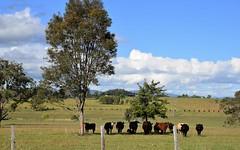 27 Plantation Lane, Wingham NSW