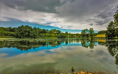 The calm before the storm (stellagrimsdale) Tags: clouds storm cloudy landscape reflections trees green blue stormclouds lake sky rain fluffy t stormy sundaysliders