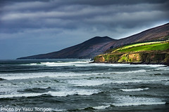 Dingle Peninsula Ireland-12 (Yasu Torigoe) Tags: inchbeachviewfromr561ondinglepeninsulainkerrycountyir