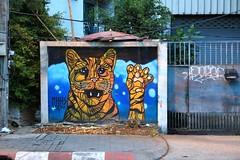 Cat! (superzookeeper) Tags: 5dmk4 5dmkiv chiangmai thailand canoneos5dmarkiv ef2470mmf28liiusm cat graffiti streetart art eos