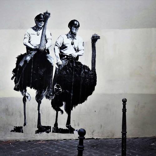 More fun with #birds ... / #art by #Murmure. #paris #streetart #graffiti #urbanart #graffitiart #urbanart_daily #graffitiart_daily #streetarteverywhere #streetart_daily #wallart #mural #ilovestreetart #igersstreetart #streetartparis #msaparis #theparisgur