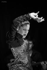 Carolina (Kaya.05) Tags: danse danseuse musicien expression noirblanc bw flamenco elcorralflamenco hautesalpes france canon5dsr émotion passion séville artistes friends flickrelite flickrunitedwinner noiretblanc