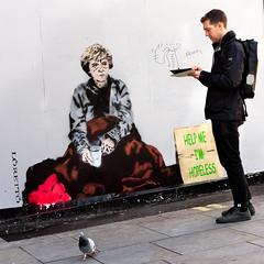 Help Me - I Am Hopeless (stevedexteruk) Tags: theresa may pm prime minister homeless begging hopeless help me loretto street art graffiti mayfair london uk 2017 politics satire pigeon 1x1 square squareformat