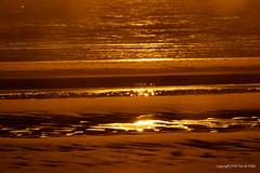 Gold (DirkVandeVelde on and off) Tags: europa europ europe frankrijk france buiten beach bercksurmer outdoor sony strand plage gold zee mer meer zonsondergang sunset nordpasdecalais