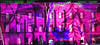Bloom Edinburgh Festival 7 (charlieinlesmahagow) Tags: bloom edinburghfestival 2017 soundshow lightshow buildings illuminations architecture city cityscape different colour historic historical lightdisplay buildingdecoration buildingart buildingillumination architectureilluminated buildingsilluminated architecturalart buildingsart standrewssquare illuminationofbuildings buildingsatnight specialbuildings colourfulbuildings colorfulbuildings lightbuildings majesticedinburgh spectacularilluminations