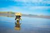 Heisaura beach / Canon EOS60D:SIGMA Art 30mm F1.4 DC HSM (telenity) Tags: japan tateyama heisaura ocean beach danboard amazon mini 日本 館山 ダンボー アマゾン ミニ 海 夏 風景