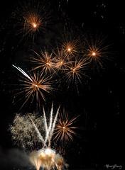 Bizarre Flowers (_MissMoneyPenny_) Tags: fireworks fuochidartificio colors colori lights luci night notte sera festival summer estate santamariamaggiore