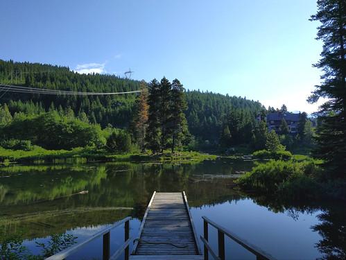 Tamarisk dock