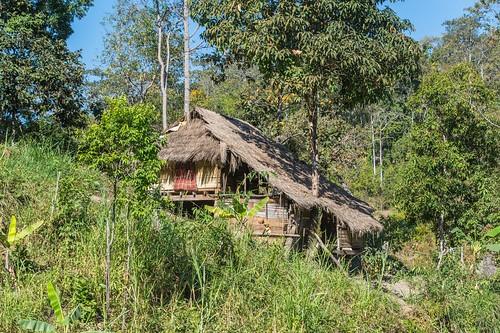 trekking chiang mai - thailande 13