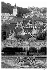 Edge of town (Bogdan_b) Tags: bw black white brasov romania playground town