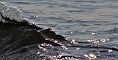 Noir brilliant (François Bouttin) Tags: sea strange explore