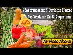 5 Sorprendentes Y Curiosos Efectos De Las Verduras En El Organismo Por Contacto O Consumo Excesivo (marktinta) Tags: 5 sorprendentes y curiosos efectos de las verduras en el organismo por contacto o consumo excesivo