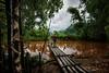 Bamboo bridge - Mai Chau Vietnam (rvjak) Tags: vietnam mai chau mountain montagne asie asia bridge pont river rivière eau water cloudy nuageux nuage bambou bamboo nikon d750