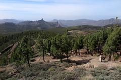 Gran Canaria_185 (Thomas Jundt + CV) Tags: altavista grancanaria kanarischeinseln montañadesándara picodelasnieves roquebantayga roquenublo spain spanien