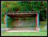 Longwood Gardens Walk 5 - Anaglyph 3D (DarkOnus) Tags: pennsylvania bucks county panasonic lumix dmcfz35 3d stereogram stereography stereo darkonus longwood gardens scenic scenery trail path forest edge pavilion learning anaglyph