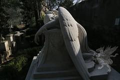 CimiteroAcattolico_17