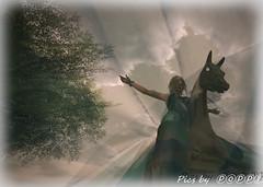 Wild horses (Poppys_Second_Life) Tags: 2l picsbyⓟⓞⓟⓟⓨ popi popisadventuresin2l popikone popikonesadventuresin2l poppy sl secondlife shopping store virtualphotography