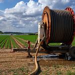 Irrigation thumbnail