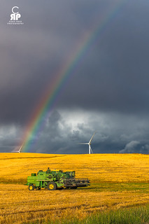 Fields of Gold at the End of a Rainbow