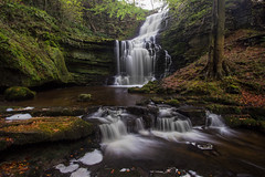 Scaleber Force (steveniceton.co.uk) Tags: waterfall scaleberforce yorkshiredales yorkshire england autumn