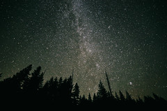(JuanCarViLo) Tags: national park mount rainier mountain wilderness green trees fair wild starry stars milky way long exposure