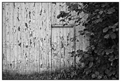 Below humanity (Alexandre Dulaunoy) Tags: doors blackwhite noiretblanc noirblanc belgium belgique belgitude nb porte portes door bw farm