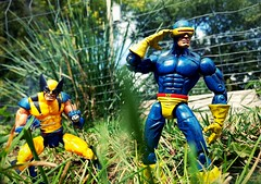 Scouting the area (aka_patch) Tags: xmen toybiz cyclops wolverine marvelcomics marvellegends action figures mutant