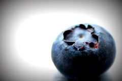A Healthy Lomo Blubree [in explore] (flowrwolf) Tags: smileonsaturday freshandfruity fruit blueberry ravenhallblueberriesvicau blue whitebackground lomo macro makro macrophotography macrophotograph macrolens tokinalens tokina100mmf28atxprod canon650d canon freshfruit food 7makesyourmouthwater 117in2017 117picturesin2017 7for117in2017 mouthwatering inexplore macromondays stayinghealthy macromonday flowrwolf
