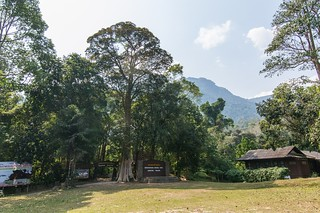 ramkhamhaeng national park - thailande 1