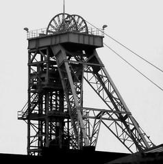 General Blumenthal (hilgers1944) Tags: generalblumenthal zechegeneralblumenthal bergwerkgeneralblumenthal recklinghausen recklinghausenhillen ruhrgebiet ruhrrevier ruhrarea ruhrpott kohlenpott schachtanlage steinkohlenzeche steinkohlenbergwerk steinkohlenbergbau bergwerk bergbau schacht pütt zeche fördergerüst förderturm mine mining coal coalmine coalmining shaft pit pithead headgear headframe mineheads colliery collieries mineshaft mineshaftheadgear shaftmine shaftmining chevalement charbon charbonnage puitsdemines chevalementminedecharbon chevalementpuitsdemine chevalementdemine miningheritage industrialheritage miningengineering industrialhistory old history bw blackwhite industry indutrie minesdecharbon blackandwhite industria fosse kopalnia szyb dul pozo endofindustry industrialdecay postindustrial abandoned urbex 333views topf25 bfv25