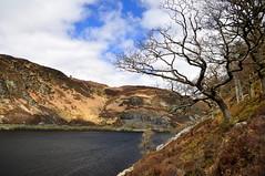 Caban-coch walk (charlottehbest) Tags: charlottehbest wales april uk easter exploring elanvalley elan reservoir lake rhayader