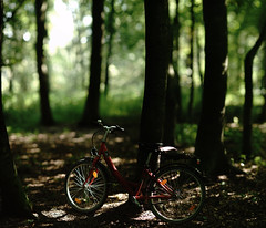 late summer light@forest (Amselchen) Tags: bicycle bokepano bokehpanorama bokeh dof blur depthoffield bw bnw forest woods trees lightandshadow light shadow sony alpha7 porst 135mmf18