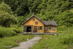 森の中に佇むMovie set (shin4433) Tags: house western orange woods architecture movie set nikon d500 grass fantasy
