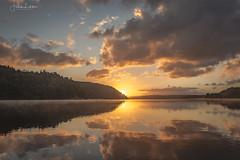 Beyond the Horizon (Fredrik Lindedal) Tags: horizon sky skyline colors colorful sunlight sun sunrise reflection reflections warmlight awakening forest lake harmony sweden sverige