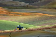 Un nuovo giorno (Zz manipulation) Tags: art ambrosioni zzmanipulation landscape aratura trattore campagna colline luce giorno toscana