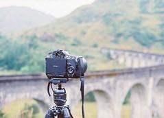 CNV00004 (SB_McAllister) Tags: fujica fujinon stx1 glencoe scotland filmisntdead lomography film 50mm