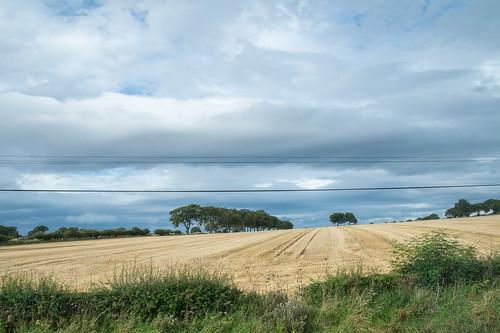 Balerno farmland