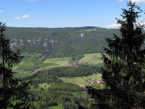 Oberdörferberg_31
