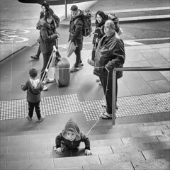 melbourne-8968-bw-ps-w (pw-pix) Tags: people man rope children childrentiedtogether tethered roped connected crutch strange unusual weird odd didntseemright peoplelooking watching steps case bags luggage walking attention fall fallen fell hood faces tactiles paving paved footpath road street bikelane markings symbol bw blackandwhite latrobestreet shoppingcentre melbournecentral cbd melbourne victoria australia
