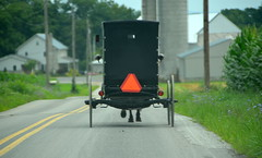 Following the buggy (afagen) Tags: pennsylvania lancastercounty amishcountry groffdaleconferencemennonitechurch wengermennonite oldordermennonite mennonite horseandbuggy buggy favorite