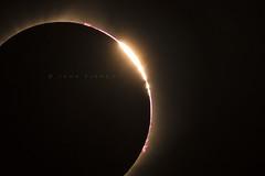 Total Eclipse 2017 (John Finney) Tags: totaleclipse2017 totality eclipse northamerica america usa wyoming corona diamondring beads plasma moon sun epic lowkey