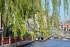 Bruges in spring (Yenner815) Tags: belgium belgia flanders flandria bruges brugia brugge spring