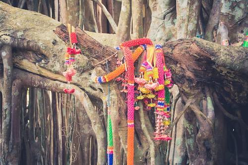 ramkhamhaeng national park - thailande 27
